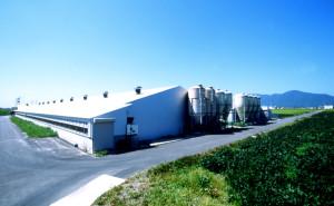 新潟県の養豚で農場HACCPの認定
